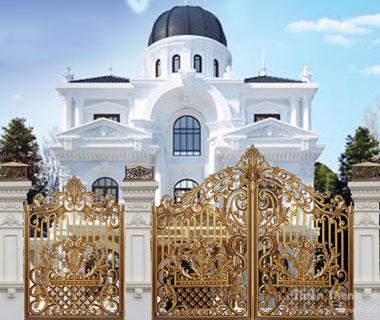 Mẫu cổng nhôm đúc CN63